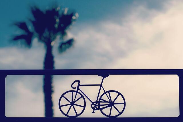 マインド(脳と心)の使い方と自転車